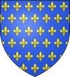 France Monarchie Les Bannières des Rois de France