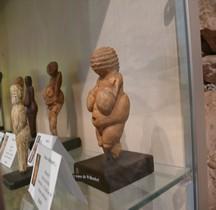 1.4.2 Paléolithique Supérieur Gravettien Moyen Venus de Willendorf