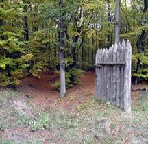 1 Limes Germanicus Rheinland-Pfalz Limeswachturms Wp 1-11 Bad Hönningen