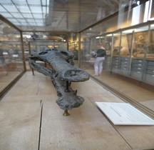 2.2.3 Jurassique Steneosaurus Heberti Paris MHN