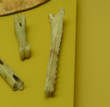 Préhistoire Protohistoire Racleur MAN St Germain en Laye