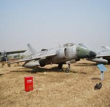 Nanchang A-5 Fantan