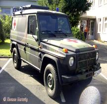 Wolf LKW  leicht MB 250 GD (4x4) SAN Lan