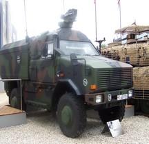 Dingo 2 ATF Eurosatory 2012