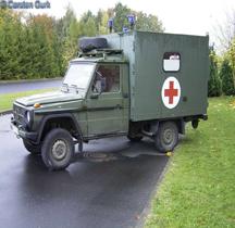 Wolf LKW gl leicht Wolf MB 250 GD (4x4) SAN