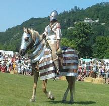 3.1 Legion Cavalerie Haut Empire Clibinarii Equites St Romain en Gal 2010