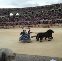 Gladiateur Essedarii  Nimes