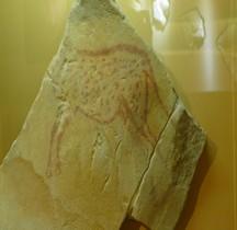 1.4.5 Paléolithique supérieur Magdalénien Gravure Boutigny