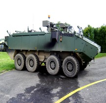 Mowag Piranha III C ( Armée Belge)