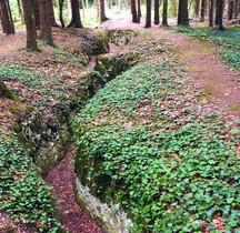 Meuse St Mihiel Foret Gobesart Bois Brulé