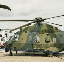 NH 90 TTH Allemagne Le Bourget 2008