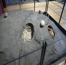 6 Etrusques Nécropole Commachio Sépulture à Crémation Comacchio Delta Antico