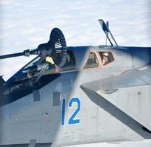 MiG 31 BM Foxhound