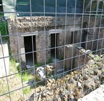Rome Rione Campitelli Forum Romain Cosidetto Carcers