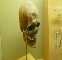 1.4 Paléolithique supérieur Homo Sapiens Type Cro Magnon SGL MAN