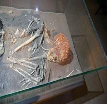 1.4.1 Paléolithique supérieur Aurignacien Grotte Cavillon Sepulture Menton