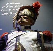 Garde Imperiale Grenadier à pied Waterloo