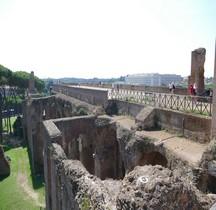 Rome Rione Campitello Palatin  Belvédère de Septime Sévère