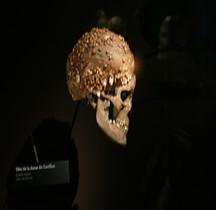 1.4 Paléolithique supérieur Homo Sapiens Type Cro Magnon Dame Cavillon Paris MH