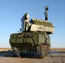 Missile Sol Air TOR M 1 SA-15 Gauntlet