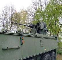 GDELS-MOWAG Piranha IIIC DF30 Belgique