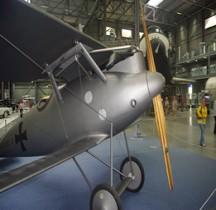 Pfalz D III (Spire)