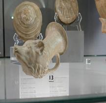Etrurie Céramique Rhyton Chien  Bologne