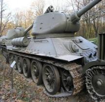 T 34/85 Pologne