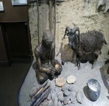 1.3 Néolithique Final Chalcolithique Elevage Menton