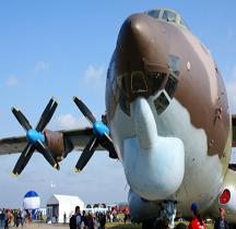 Antonov 22 A Cock (Antheus)
