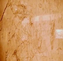 Grafitti Rome Le Gladiateur Lyon