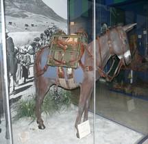 2°GM 1943 Mule