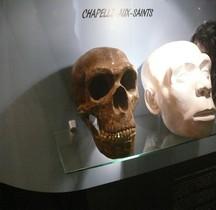 1.3.3 Paléolithique Moyen Moustérien Homo Sapiens Neanderthalensis Chapelle aux Saints  Bruxelles
