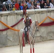 Legion Porte enseigne Cavalerie Draconarius Nimes 2015