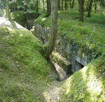Meuse St Mihiel Bois d'Ailly