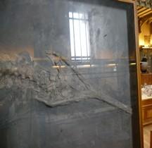 2.2.1 Jurassique Ancien Mystriosaurus Laurillardi Paris MHN