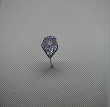 1678 Diamant Hortensia ou Rose  Louvre