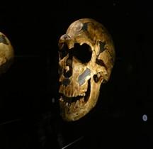 1.3.3 Paléolithique Moyen Moustérien Homo Sapiens Neanderthalensis Abri de la Ferrassie