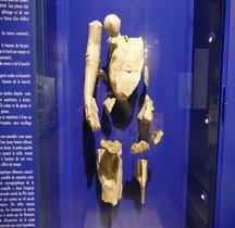 Statuaire Nymphe à la Coquille Marseille Musée Docks Romains