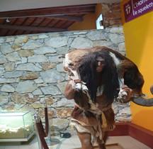 1.3.3 Paléolithique Moyen Moustérien Homo Sapiens Neanderthalensis Retour Chasse Tautavel