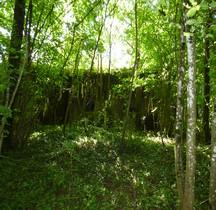 CEZF 11 La Briqueterie Ouest  08 Signy-l'Abbaye