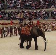Militaria Eléphant de Guerre